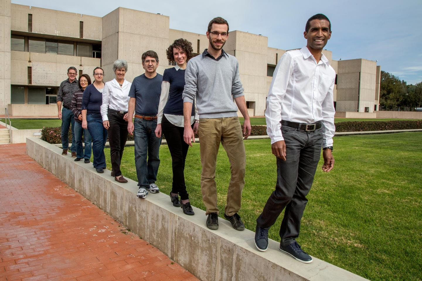 From right: Salk researchers Steeve Bourane, Antoine Dalet, Stephanie Koch, Chris Padilla, Cathy Charles, Graziana Gatto, Tommie Velasquez and Martyn Goulding. Credit: Salk Institute