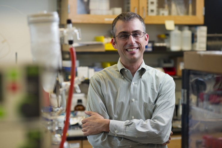 Michael Pollastri, an associate professor of chemistry and chemical biology and head of Northeastern's Laboratory for Neglected Disease Drug Discovery, recently co-authored aresearch paper that identifies hundreds of chemical compounds that could lead to acure for sleeping sickness. Credit: Brooks Canaday