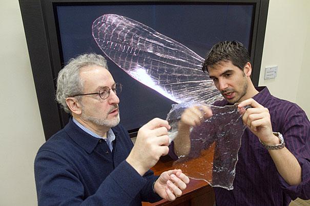 Javier Fernandez vpravo. Kredit: Jon Chase / Harvard University.