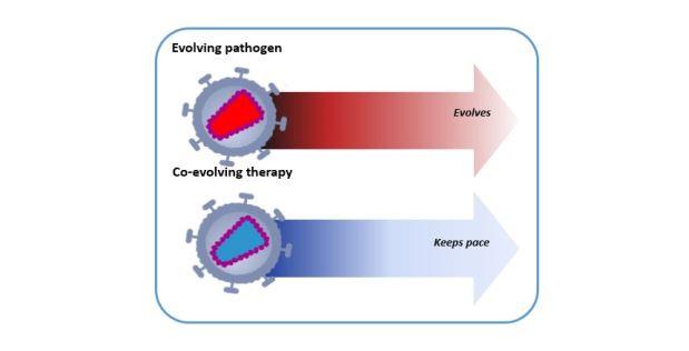 Koevoluční terapie: Kredit: DARPA