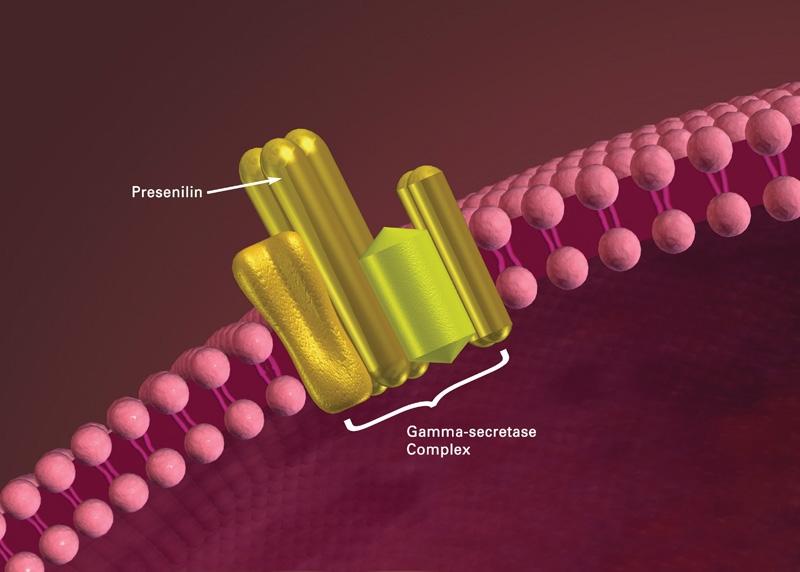 Presenicilin